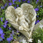 STD27 CHERUB IN WINGS