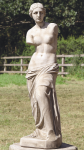 VENUS DE MILO <img class='new_mark_img2' src='//img.shop-pro.jp/img/new/icons51.gif' style='border:none;display:inline;margin:0px;padding:0px;width:auto;' />
