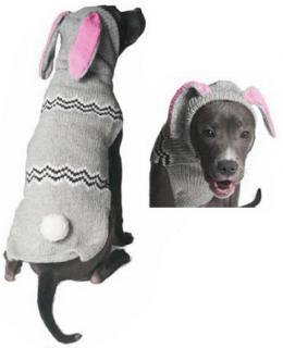(S) Bunny Hoodie - Chilly Dog
