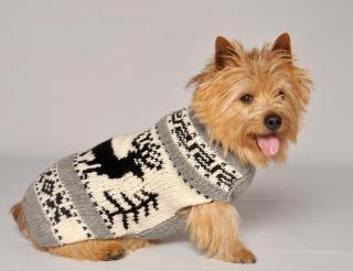 Rein Deer shawl (S)-Chilly Dog