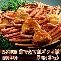 【送料無料】日本海産 茹でたて紅ズワイ蟹 6尾(2kg)【かに カニ 蟹】