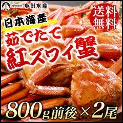 「期間限定で即8,400円→7,400円」【送料無料】日本海産 茹でたて紅ズワイ蟹 800g前後x2尾#元気いただきますプロジェクト