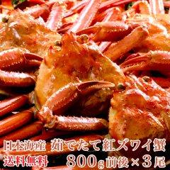 【送料無料】日本海産 茹でたて紅ズワイ蟹 800g前後x3尾【かに カニ 蟹】