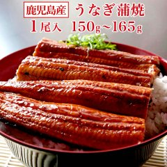宮崎産 うなぎ蒲焼 1尾(150g〜165g)【国産 うなぎ ウナギ 鰻】ご希望により「いかかんずり干し2枚」プレゼント♪