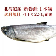 北海道産 新巻鮭(仕上り 2.3kg 前後) 1 本物 【鮭 さけ サケ】ギフト 贈答 同窓会 快気祝い グルメ 海の幸 海鮮 新潟 送料無料