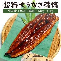 特大うなぎ蒲焼 1尾(275g〜285g)【中国産 うなぎ ウナギ 鰻】