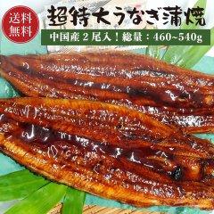 【送料無料】特大うなぎ蒲焼 2尾(総量:550g〜570g)【中国産 うなぎ ウナギ 鰻】