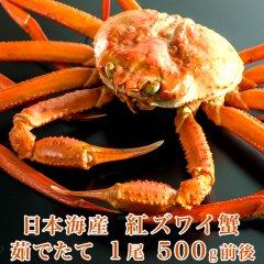 日本海産 茹でたて紅ズワイ蟹 1尾 500g前後【かに カニ 蟹】