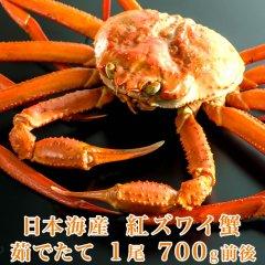 日本海産 茹でたて紅ズワイ蟹 1尾 700g前後【かに カニ 蟹】