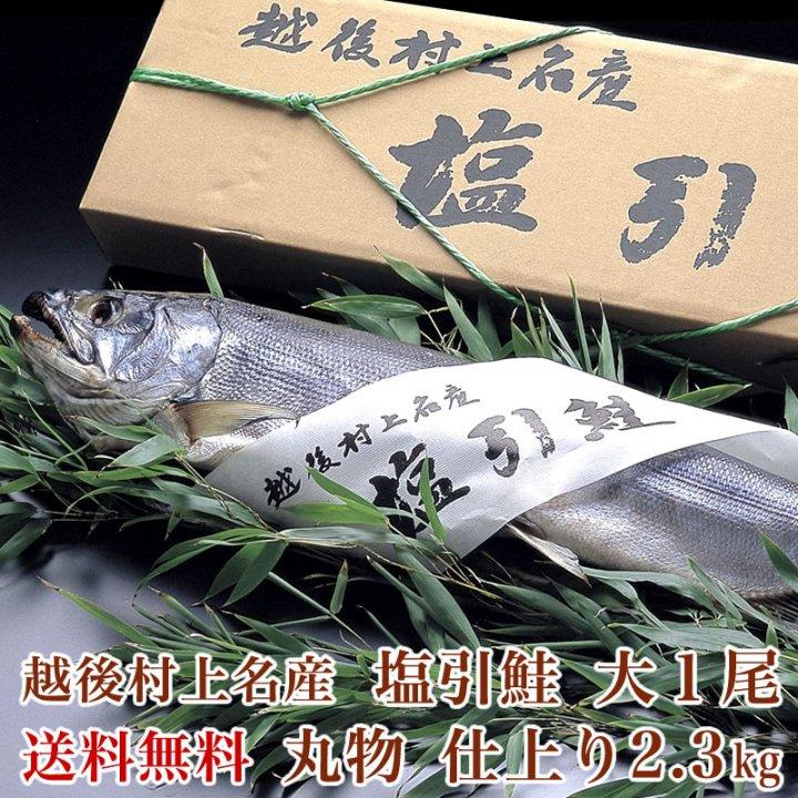 村上名産塩引き鮭  大1尾(仕上り2.3kg) 【送料無料】