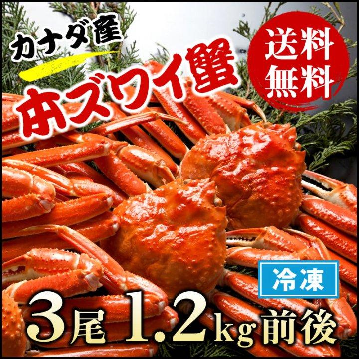 本ズワイ蟹 1.2kg  1尾430g前後×3尾  【送料無料】  かに 蟹 カニ