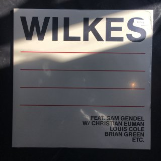 Sam Wilkes / Wilkes (Leaving Records) LP