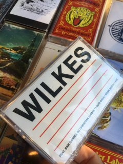 SAM WILKES / WILKES (feat . sam gendel w/ christian euman/louis cole / brain green/ etc