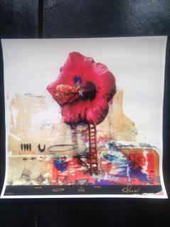 TEEBS x DUBLAB.COM limited silk screen printed poster
