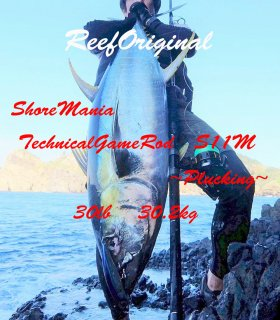 Shore Mania Technical Game Rod S11M ∼Plugging∼(ショアキャスティングプラッギングロッド)