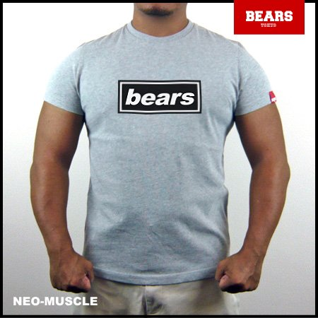<img class='new_mark_img1' src='//img.shop-pro.jp/img/new/icons13.gif' style='border:none;display:inline;margin:0px;padding:0px;width:auto;' />■ BEARS TOKYO Tシャツ BEARS UK ROCK (ベアーズ UK ロック) グレー