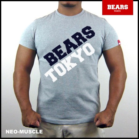 <img class='new_mark_img1' src='//img.shop-pro.jp/img/new/icons13.gif' style='border:none;display:inline;margin:0px;padding:0px;width:auto;' />■ BEARS TOKYO Tシャツ FUSION (フュージョン) グレー