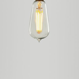 LARGE SQUIRREL CAGE LED