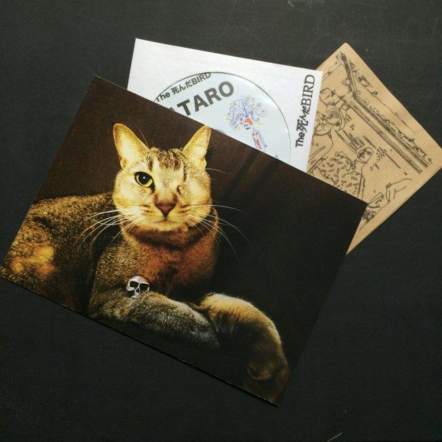 『GATARO』(CD)The 死んだBIRD