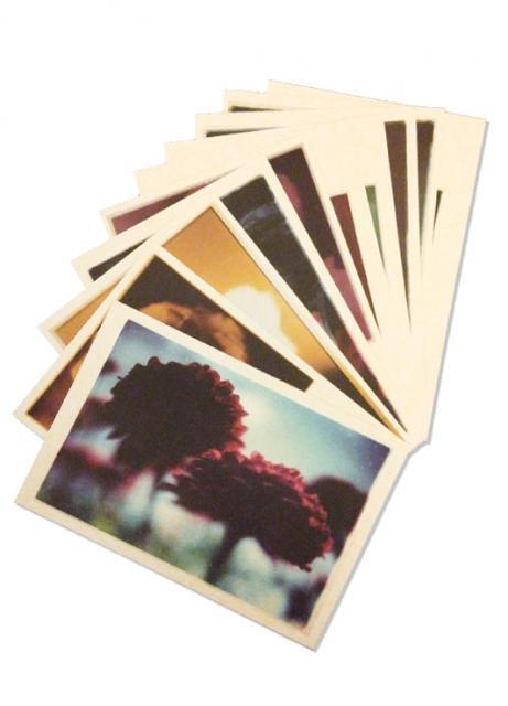 「silent flowers」ポストカードセット / アミタマリ