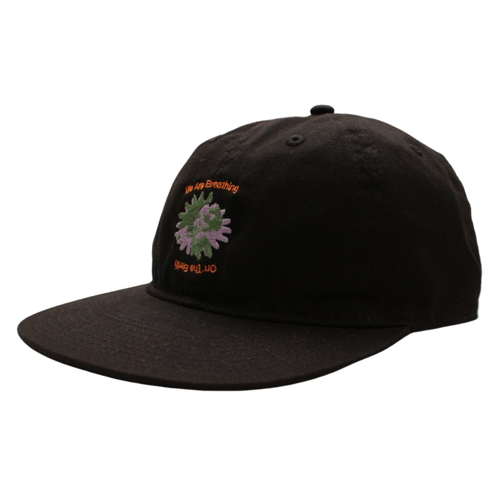 EXTENSION<br>ON THE EARTH CAP<br>