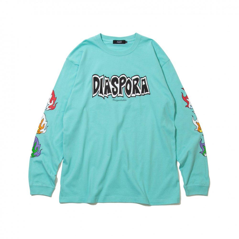 Diaspora skateboards<br>Flame L/S Tee<br>