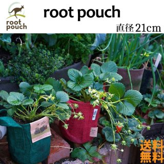 root pouch (ルーツポーチ) 直径21cm 2ガロン 【メール便送料無料】 持ち手の付いた不織布ポット  #2 <img class='new_mark_img2' src='https://img.shop-pro.jp/img/new/icons61.gif' style='border:none;display:inline;margin:0px;padding:0px;width:auto;' />
