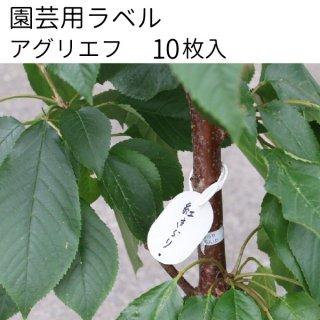 『アグリエフ』 10枚入り 園芸用ラベル 37mm×55mm 小判型 フラワーラベル メール便可