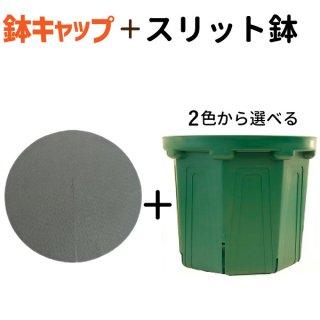 10号スリット鉢★鉢キャップコガネガードセット CSM-300 紺色 モスグリーン