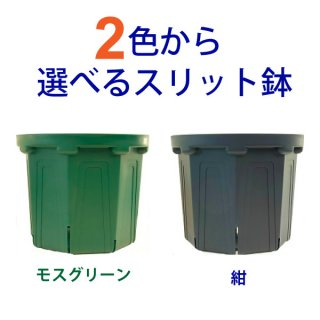 2色から選べる 7号スリット鉢  直径21cm