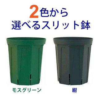 8号スリット鉢(ロングタイプ)直径24cm 紺色 モスグリーン