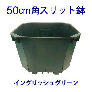50cm角スリット鉢 イングリッシュ・グリーン 外径約50cm  大型 CSM-500