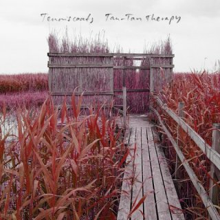 Tenniscoats<br>Tan - Tan Therapy / CD