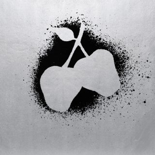 Silver Apples<br>Silver Apples / LP