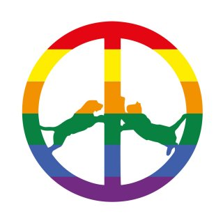 Hype Williams<br>Rainbow Edition / LP+DL