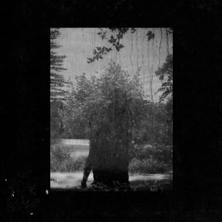 Grouper<br>Ruins / LP