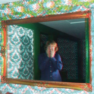 Ty Segall<br>Mr. Face / 2x7